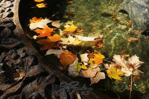 13 leaves-2