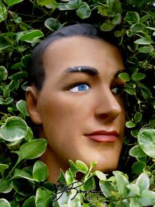 18 The Gardener RANKINE_