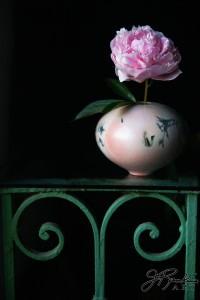 Peony in Foster vase